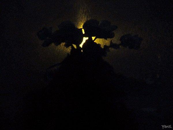 Nuit2