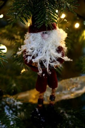 Santa Claus is Canadian (5)