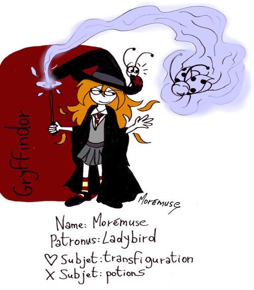 J'ai craqué :D (meme Harry Potter)