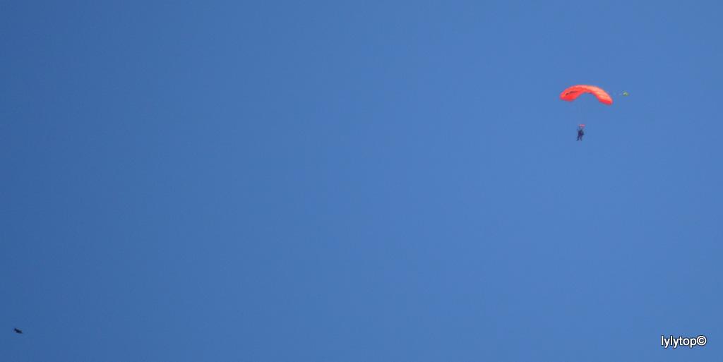 Entre terre et ciel du Cotentin