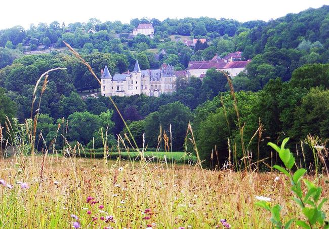 Visite extérieur du château de Rocheprise : un mardi découvertes de l'OT de Châtillon-sur-Seine