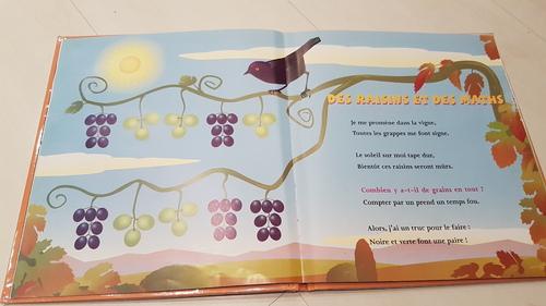 Deux livres d'énigmes mathématiques pour développer les premières stratégies de calculs