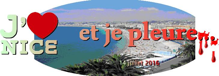 14 juillet 2016. L'horreur à Nice....