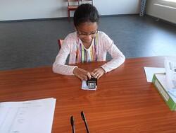 Les élections de délégués