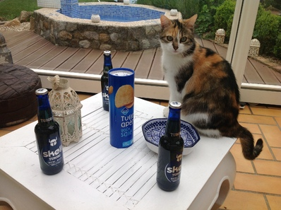 Mon test des bières Skoll (part 2)