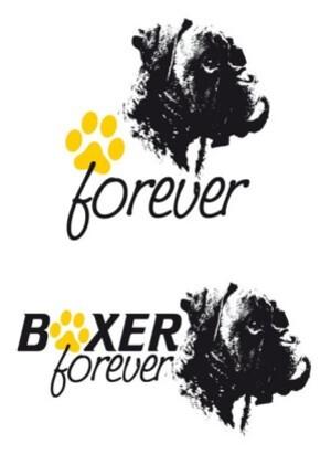 Boxer Forever