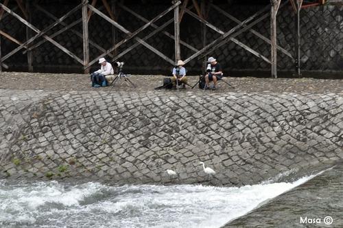 Katsuragawa 桂川