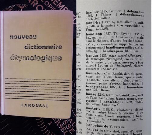Le handicap à travers les dictionnaires