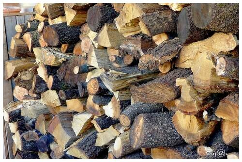 du 12 au 14 Janvier, au jardin, dans le ciel et...corvée de bois!