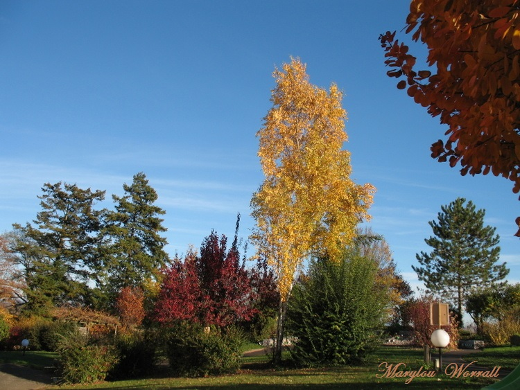 Beblenheim (68) : Douceur de l'automne