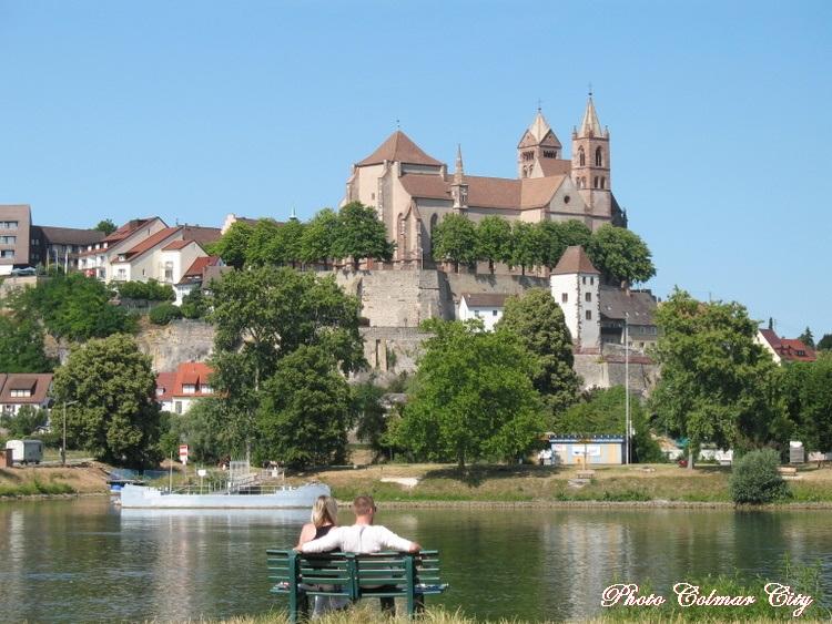 Île du Rhin : balade au bord du fleuve
