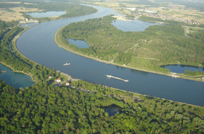 Drusenheim - le Rhin