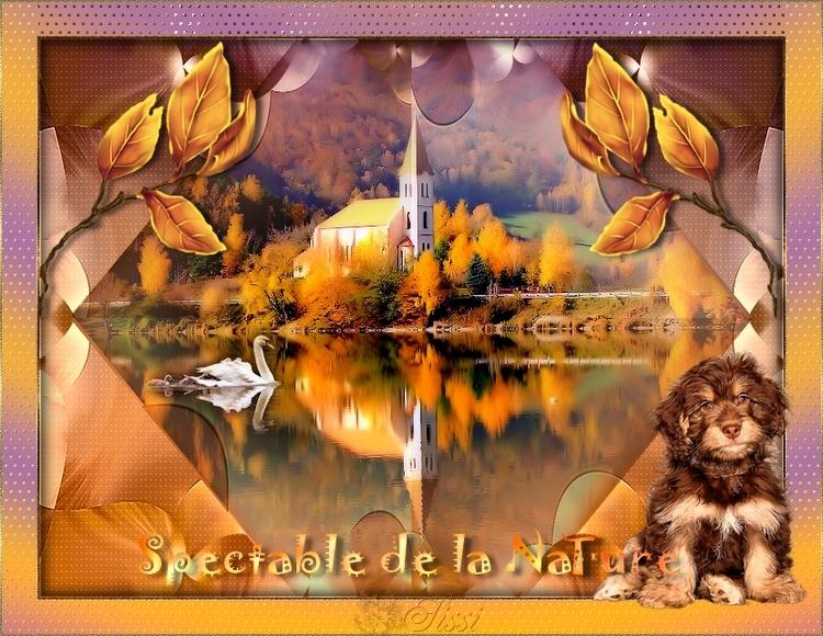 * Spectacle D'Automne *