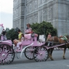 Canada 2009 Montréal (47) [Résolution de l\'écran] copie.jpg