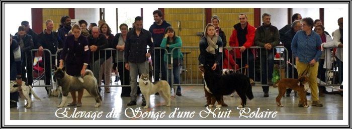 Exposition de Monclar-de-Quercy (21 avril 2019)