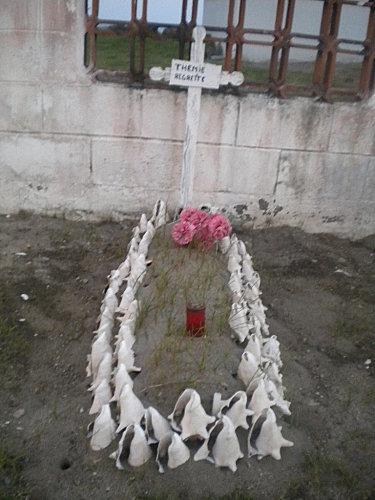 Madinina janvier 2011 497