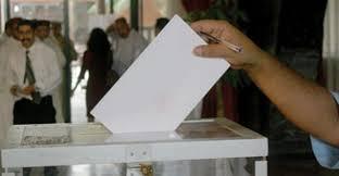 """Résultat de recherche d'images pour """"conseil constitutionnel éléction"""""""