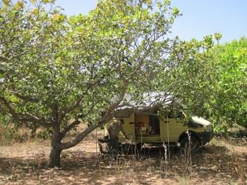 058 Premier repas au Burkina sous les anacardiers