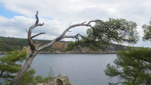 Baie de la Moutte