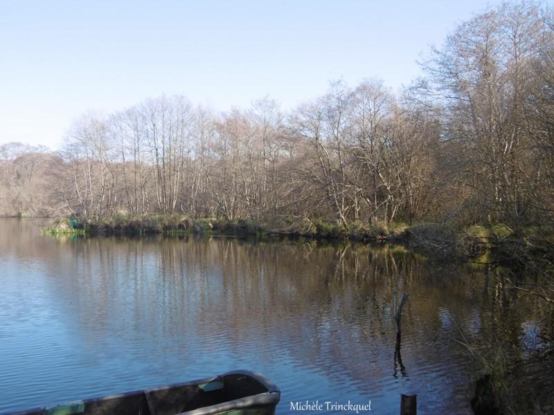 Une balade au Lac le 6 février....