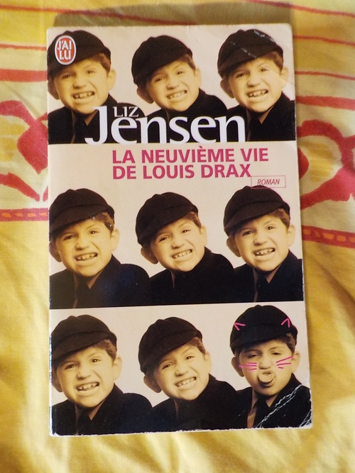 DOMANDALAS lecture la neuvième vie de Louis Drax