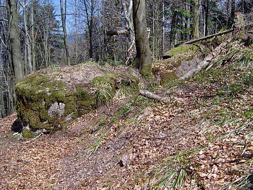 roche pierre piquee neuvevoie derzognier 079