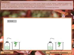 Thème 2: Chapitre 5: La production de matière chez les plantes vertes