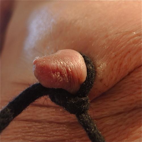 Des nœuds…