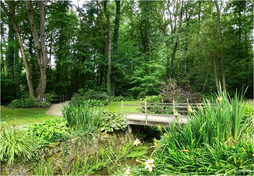 Le lac de Bambois, Fosse-la-Ville (Belgique) - #1