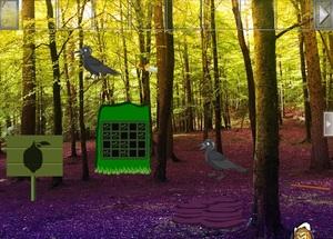 Jouer à Escape from forest raven
