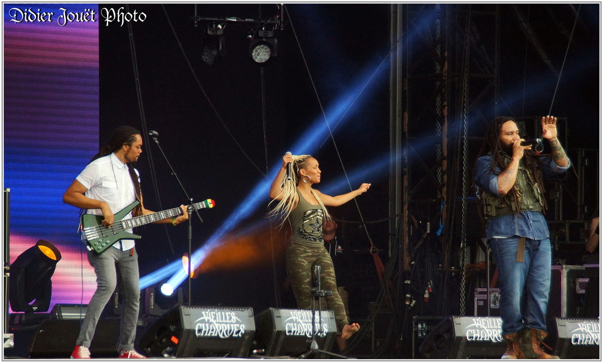 Ky-Mani Marley (1) - Festival des Vieilles Charrues 2014