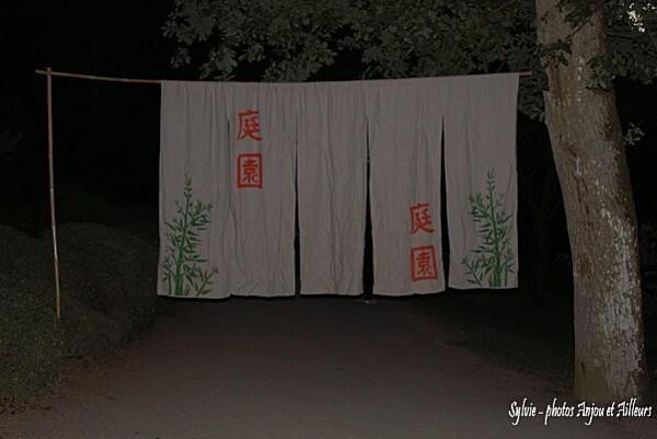 DSC08153 parc nuit