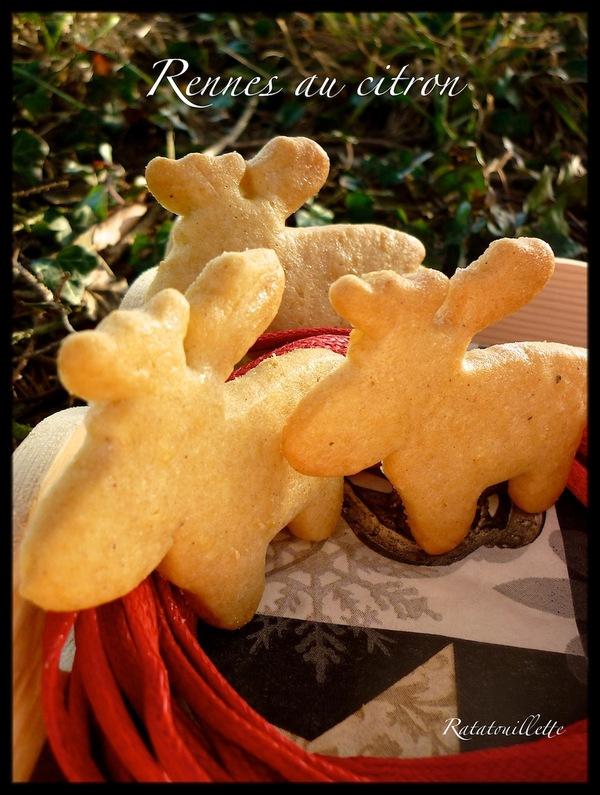 Petits gâteaux de Noël 5 : les rennes du Père Noël au citron
