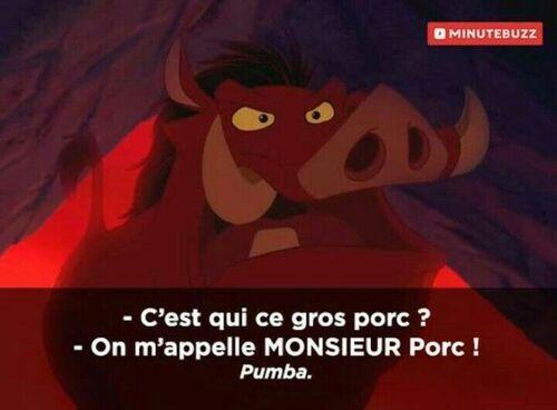 La nuit porte conseil uniquement parce que tu viens de décrocher ton attention de tes notifs facebook, Jean-Jacques. Et je te le prouve scientifiquement en un meme du Roi Lion.