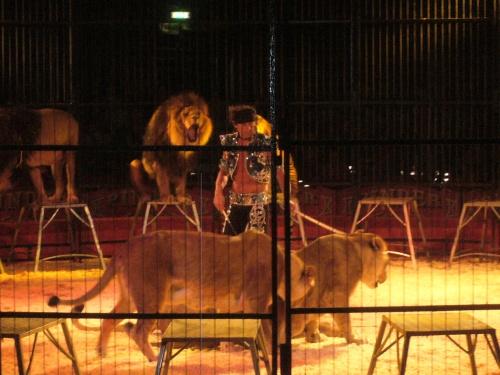 Cirque !