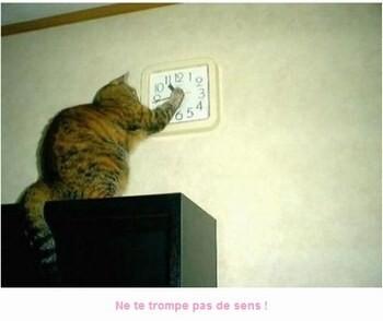 """Résultat de recherche d'images pour """"heure d'été humour"""""""
