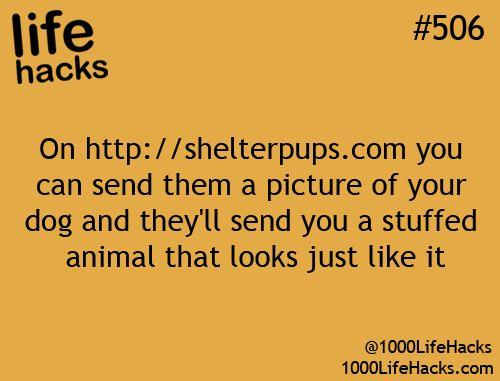 I'll get an ewok...: