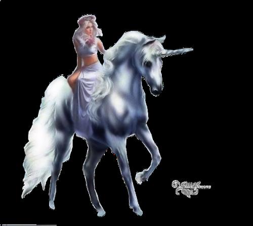 tubes Licornes-cheval