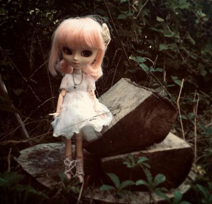 Dans le jardin...