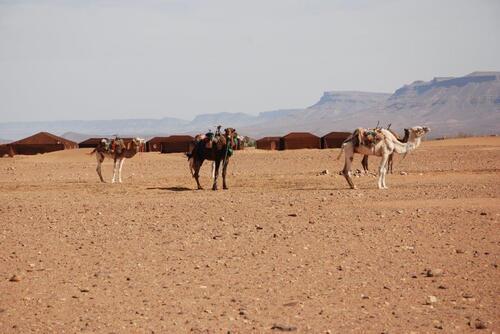 Aux dunes de Tinfou