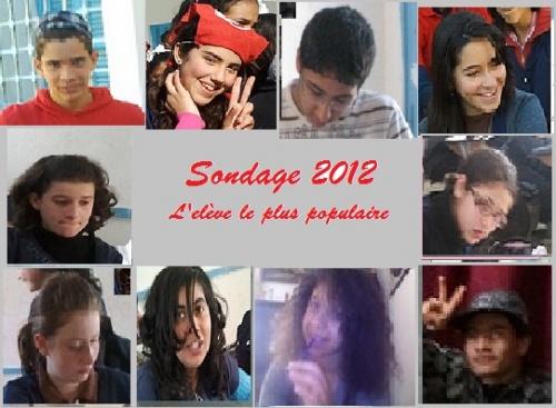 Voter : Sondage 2012 : L'élève le plus populaire au collège