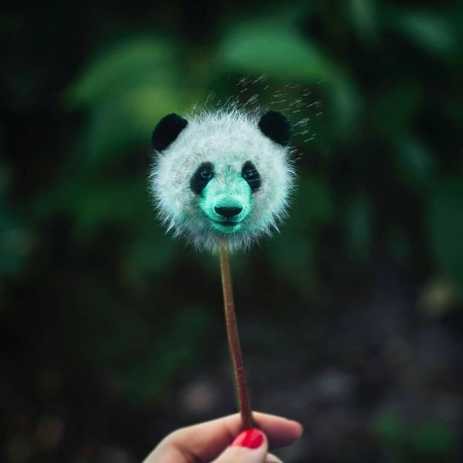 photo manipulation panda