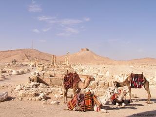 Palmyre : la forteresse