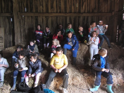 L'école à la ferme