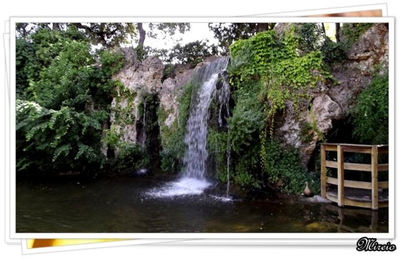 Dans un jardin de Courthezon (84)