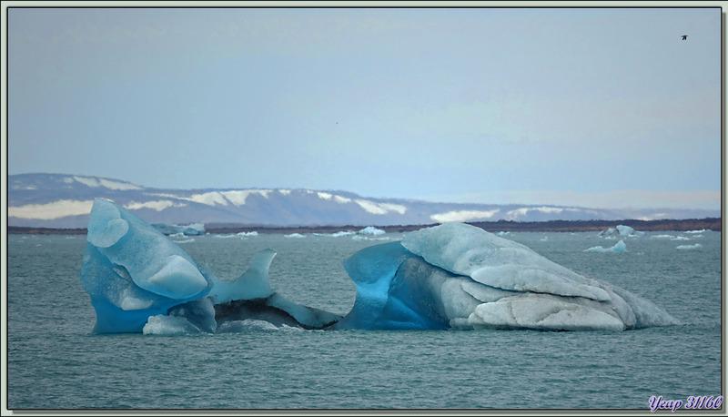 """En attendant mon débarquement, je capture en image les plus beaux """"glaçons"""" qui défilent - Devon Island - Nunavut - Canada"""