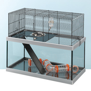 Cage hamster russe