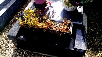 Nettoyeur de tombes