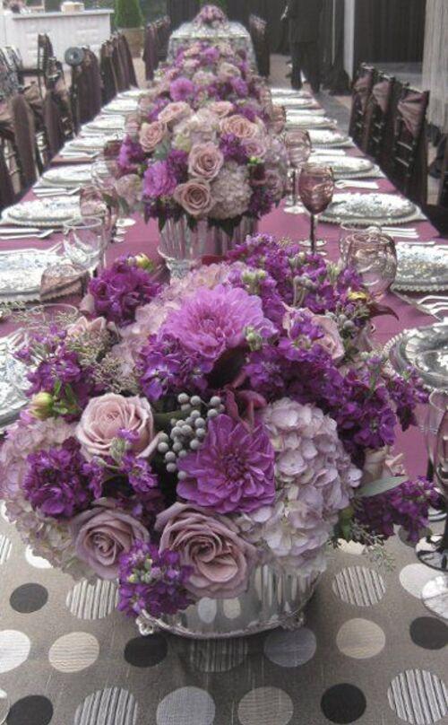 Couleur violet-série photos-