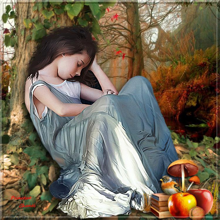 Songe d automne